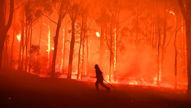 Hvor Meget Og Hvad Er Det Egentlig Der Braender I Australien